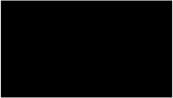 VideoRitratti